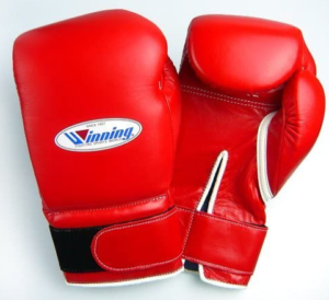 Which is the best boxing glove for training with the heavy bag